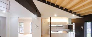 小山田の家(大屋根の家)